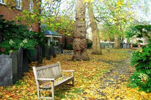 Chapel garden autumn 2008
