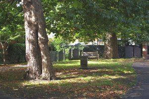 Chapel garden summer 2008
