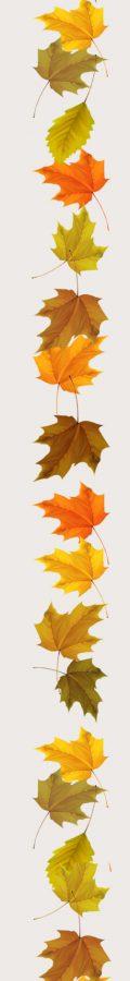leicester-unitarians autumn