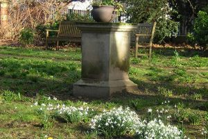 Commemorative pedestal and snowdrops, Great Meeting garden